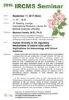 28th IRCMS Seminar