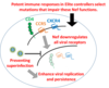 Differential ability of primary HIV-1 Nef isolates to downregulate HIV-1 entry receptors