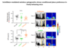 Remote control of neural function by x-ray-induced scintillation