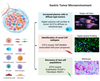 Single-cell atlas of lineage states, tumor microenvironment and subtype-specific expression programs in gastric cancer