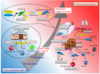 Cellular senescence in the tumor microenvironment and context-specific cancer treatment strategies